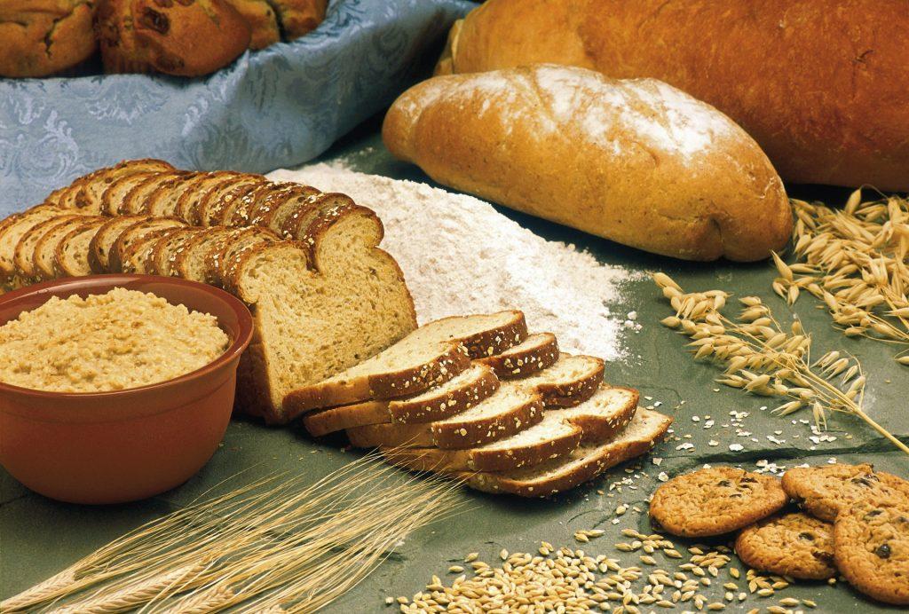 determinazione delle ceneri sui cereali