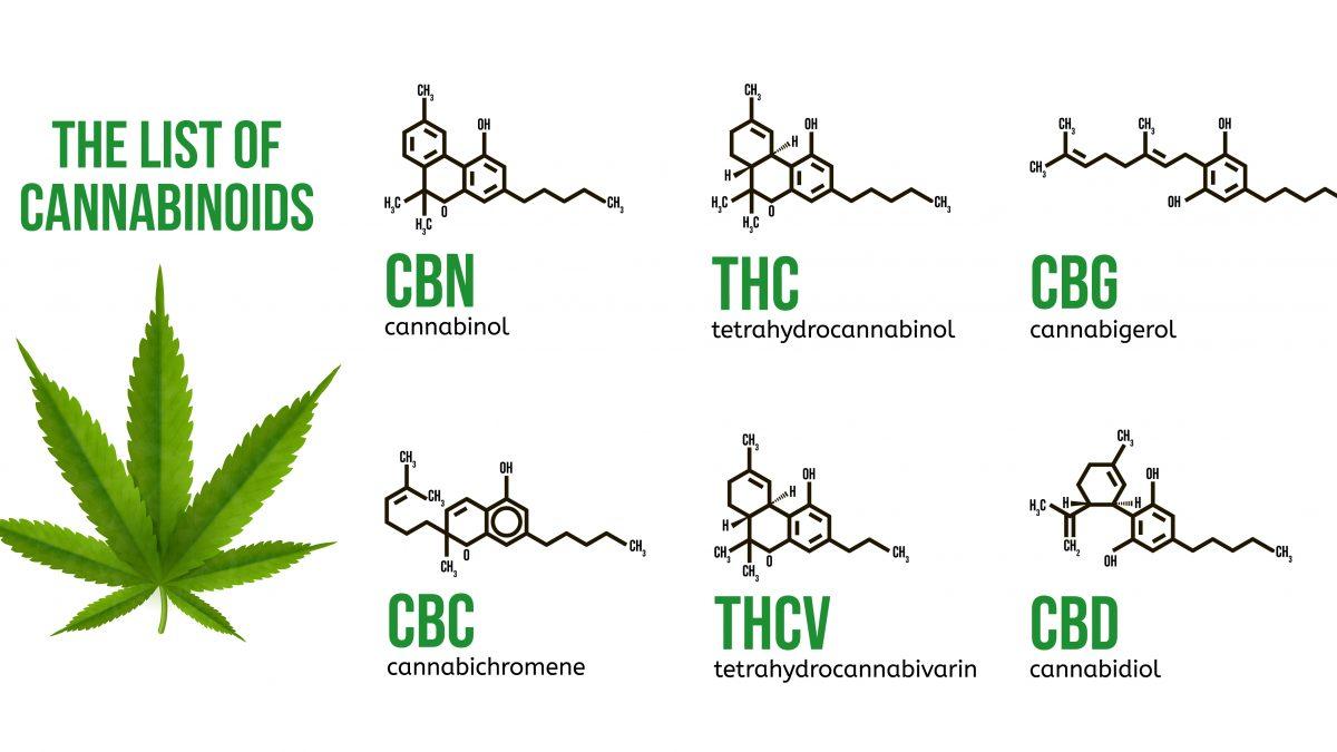 Estrazione dei cannabinoidi con solvente o con CO2 supercritica