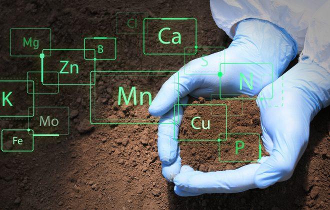 Determinazione dei metalli pesanti su suoli tramite ICP-MS