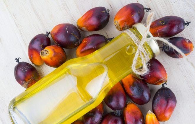 analisi chimiche olio di palma